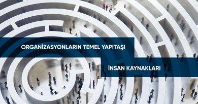 Organizasyonların Temel Yapıtaşı: İnsan Kaynakları